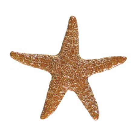 STARFISH BROWN (STABROB) 5″