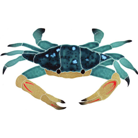 BLUE SWIMMER CRAB (CBSMCOOS) 7″x12″