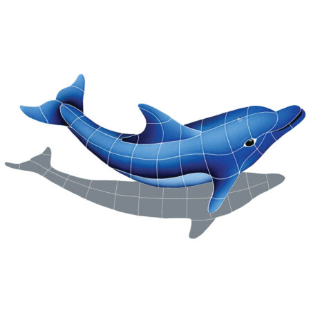 DOLPHIN WITH SHADOW RIGHT 17″ x 30″ (DSHBLURS)
