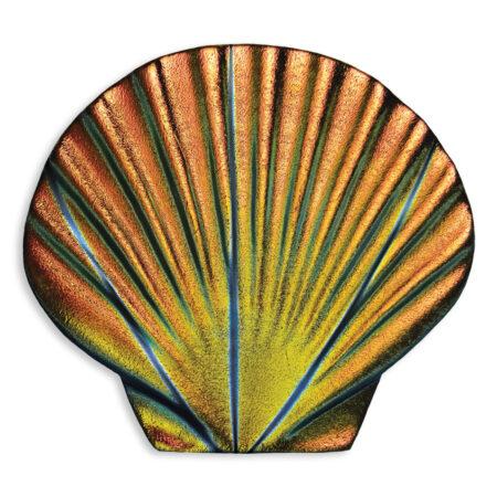 Fusion Rainbow Seashell (MSSHRAIB) 5″