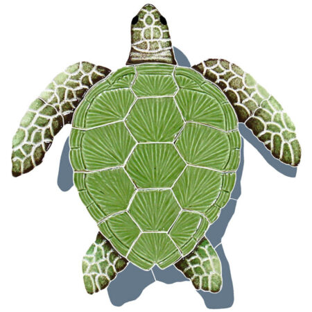 LOGGERHEAD TURTLE SHADOW GREEN 9″ x 8″ (TLSGRES)