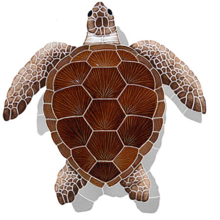 LOGGERHEAD TURTLE SHADOW BROWN 22″ x 20″ (TLSBROL)