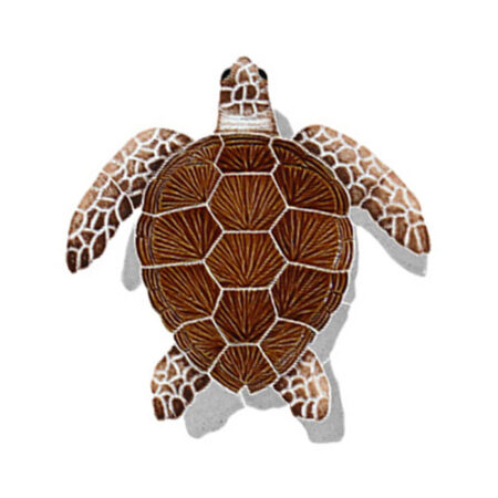 LOGGERHEAD TURTLE SHADOW BROWN 9″ x 8″ (TLSBROS)
