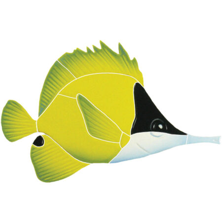 LONG NOSED BUTTERFLY FISH (LNBFYS) 6″X8″
