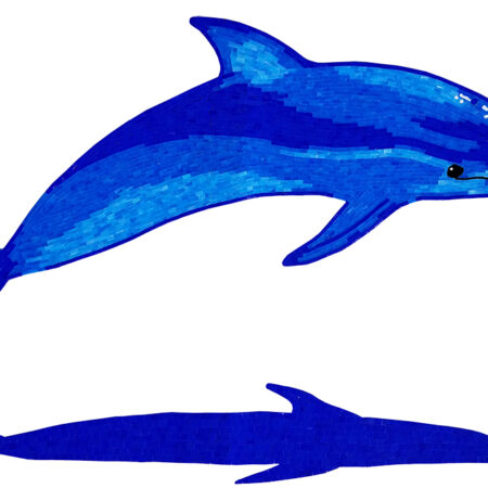 Dolphin A with Shadow blue (G-DOLSHA) 36″ x 60″