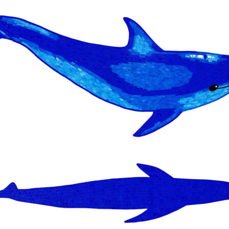 Dolphin B with Shadow blue (G-DOLSHB)  40″ x 60″