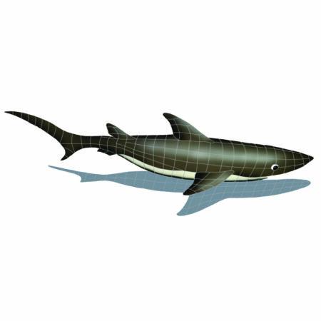 SHARK WITH SHADOW (SSHGRARL) 24″x61″
