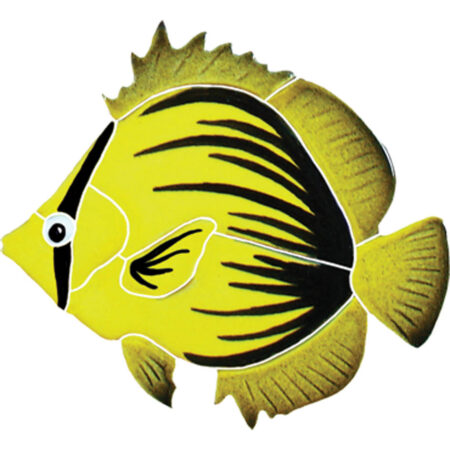 SPIKED BUTTERFLY FISH (BFSYELLS) 4″X5″