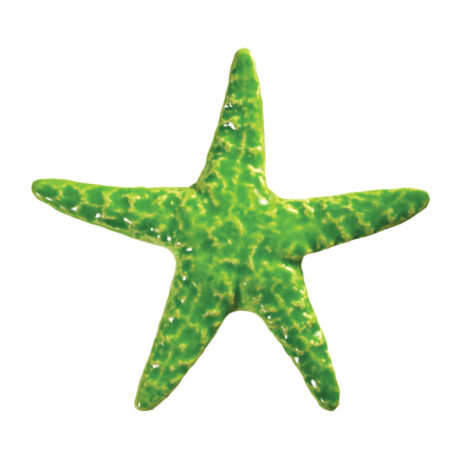 STARFISH LIME (STALIMB) 5″