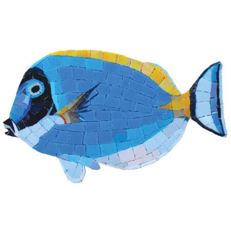 Surgeon Fish (G-SFS) 6″x10″