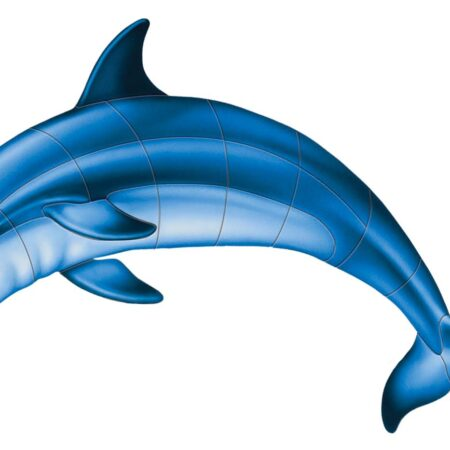 Bottlenose Dolphin-A