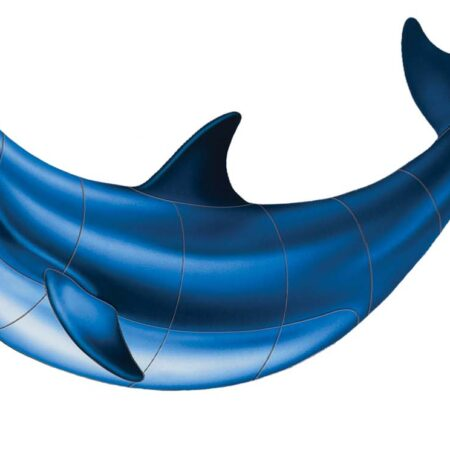 Bottlenose Dolphin-B