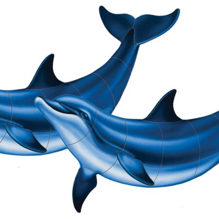Double Bottlenose Dolphin-B  52″ x 27″