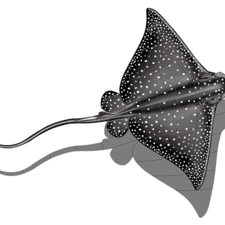 Eagle Ray (with shadow) 18″x15″