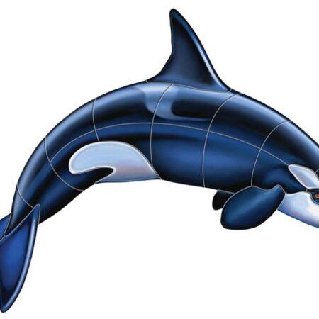 Orca – A 36″x26″