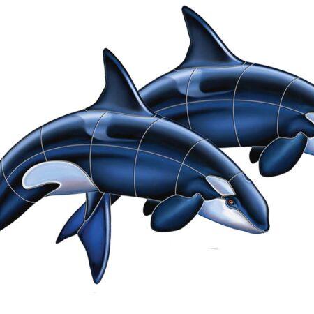 Orca – A Double 48″x33″
