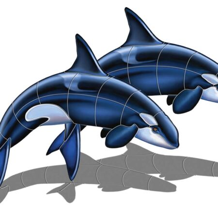 Orca – A Double (with shadow) 48″x35″
