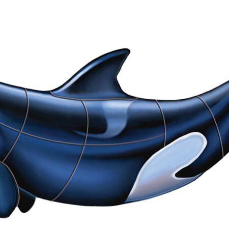 Orca – B 36″x16″