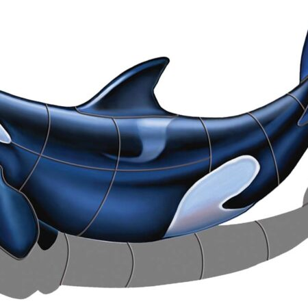 Orca – B (with shadow) 36″x20″