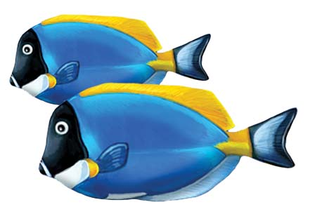 Powder Blue Tang (Double) 9″ x 6″