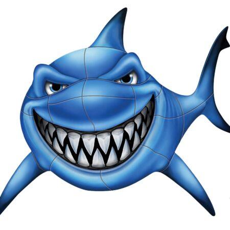 Gotcha Shark 37″x35″