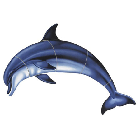 Bottlenose Dolphin-A (with shadow) 18″x12″ PORC-BD1-18/SH