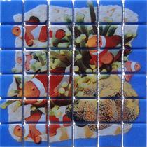 Deco Coral #4 6X6