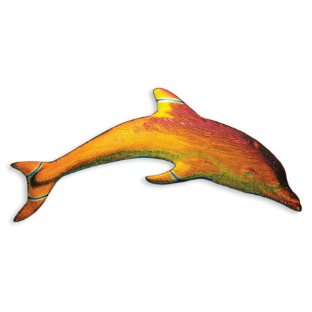 Fusion Mini Dolphin Rainbow MDMIRAIB 6″