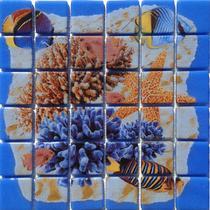 Deco Coral #2 6×6