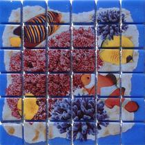 Deco Coral #3 6×6