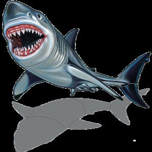 Shark (with shadow) 32″x25″